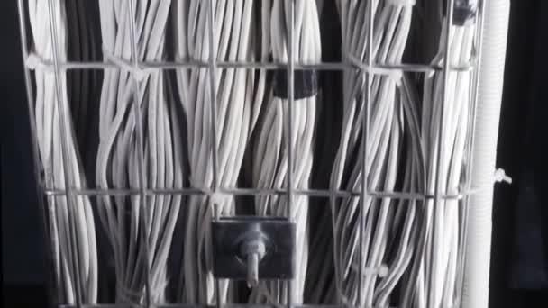 Viele Reihen weißer Drähte an der Decke der Anlage, technisches und Internetkonzept. Aktion. von unten Ansicht der gebundenen Drähte, viele Stromkabel im Rechenzentrum.