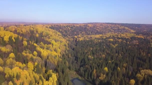 Aerial view of autumn forest and small lake. Clip. Breathtaking panoramic aerial view of the hills of colorful orange and yellow trees in a mixed coniferous forest in a morning haze.
