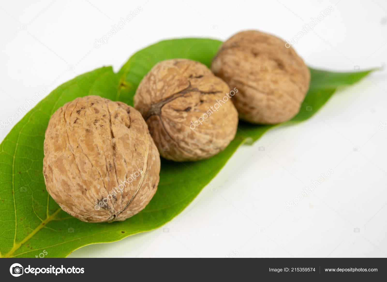 walnuts shell white kitchen table fruit desserts dishes kitchen