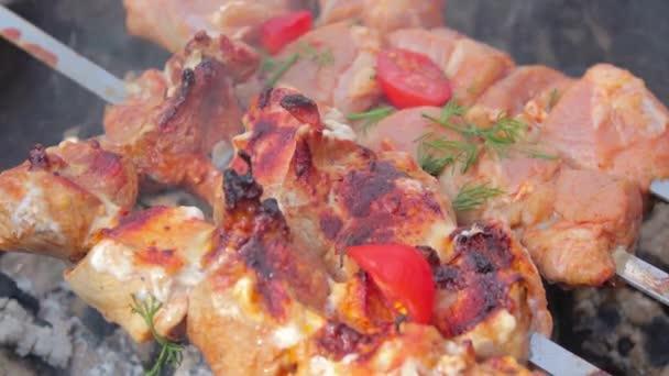 Grilování Kebab vaření na grilu