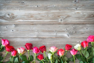 Roses on wooden board. Valentines Day background