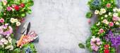 Zahradnické nářadí a jarní květiny na terase