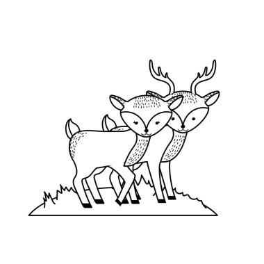 line cute deer animal couple together vector illustration