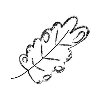grunge cute nature exotic leaf design vector illustration