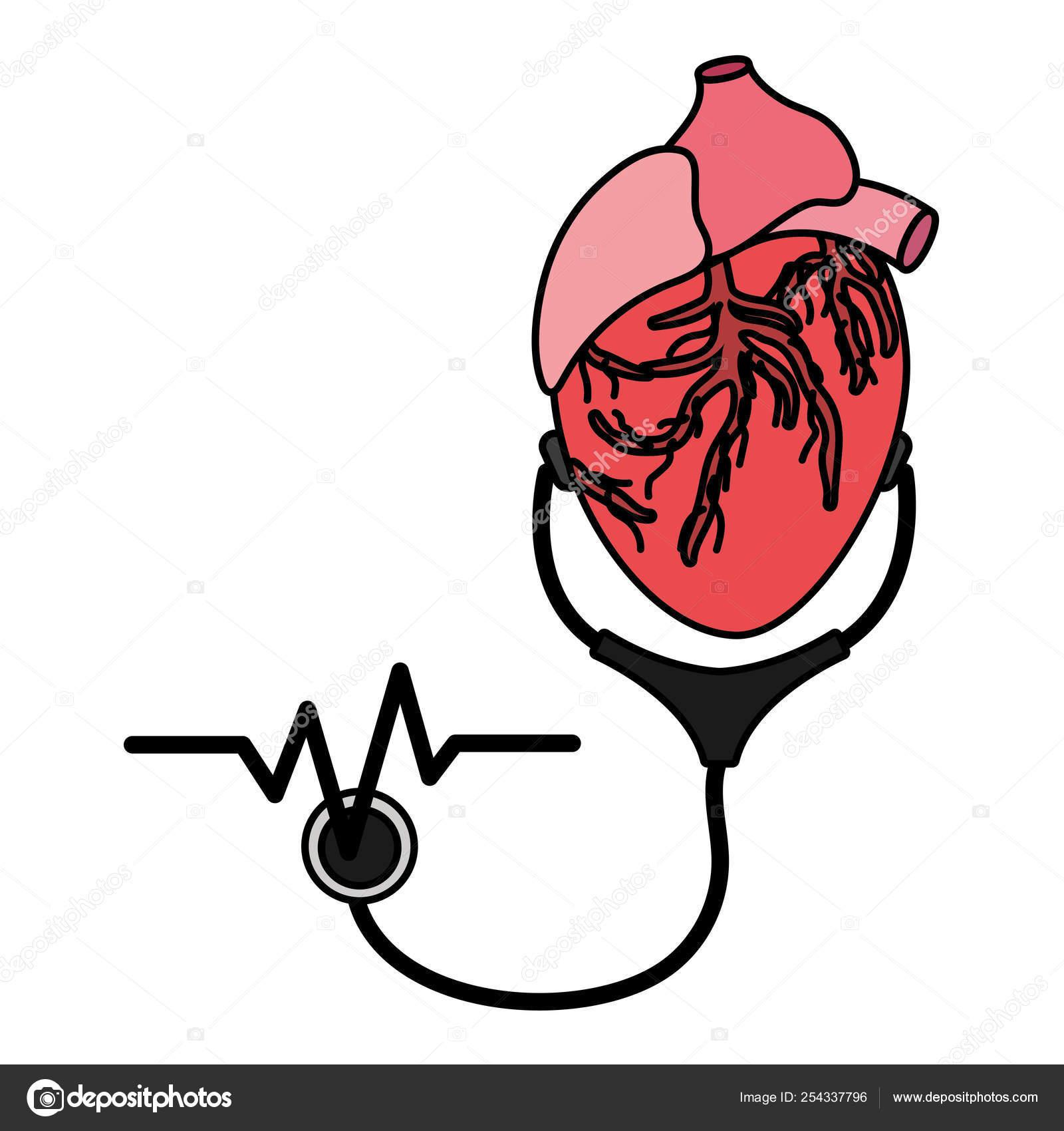 Dibujos Animados Médico Profesional De La Salud Vector De