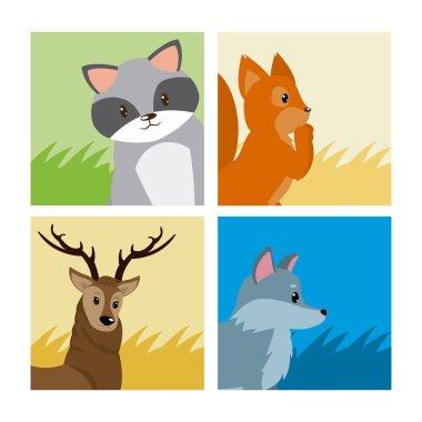 Cute animals cards