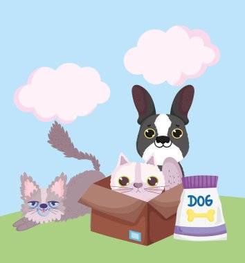 Pet shop, little cats and dog with box and food pack animal domestic cartoon vector illustration icon