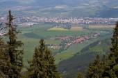 Liptovská kotlina z Demanovské hory. Pohled na obec Demanova a část města Liptovský Mikuláš. Stromy, louka, domy a část města.