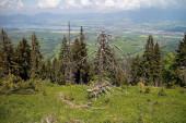 Na vrcholu Demanovské hory v Nízkých Tatrách. Pohled na údolí Liptovské kotliny s přehradou Liptovská Mara a část obce Demanova a město Liptovský Mikuláš. Krásné Slovensko.