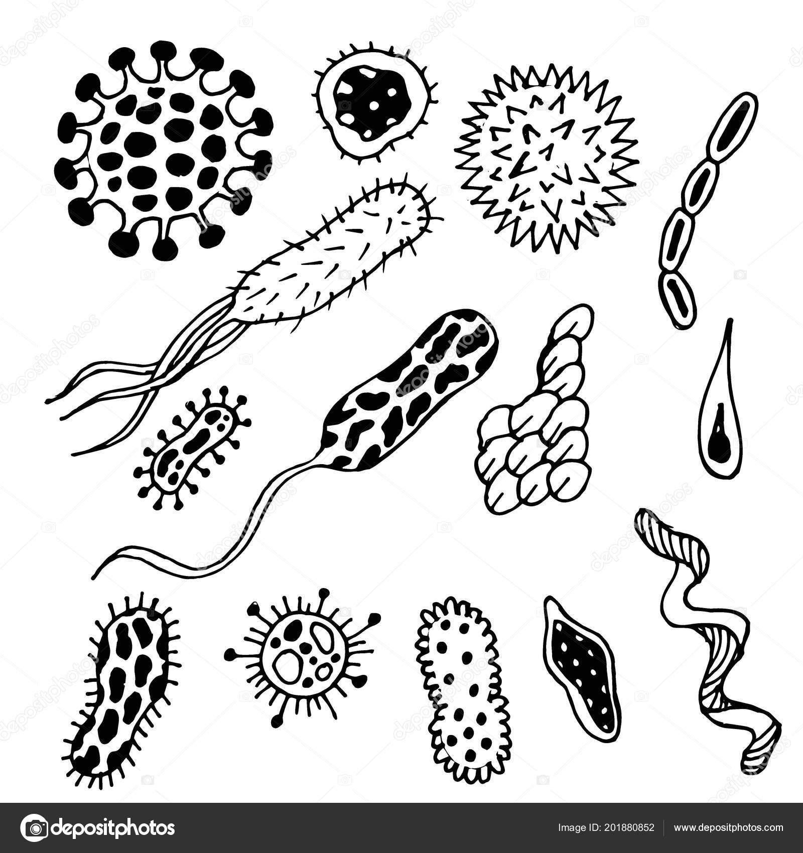 Doodle Farklı Mikrop Beyaz Siyah Stok Vektör Natka80 201880852