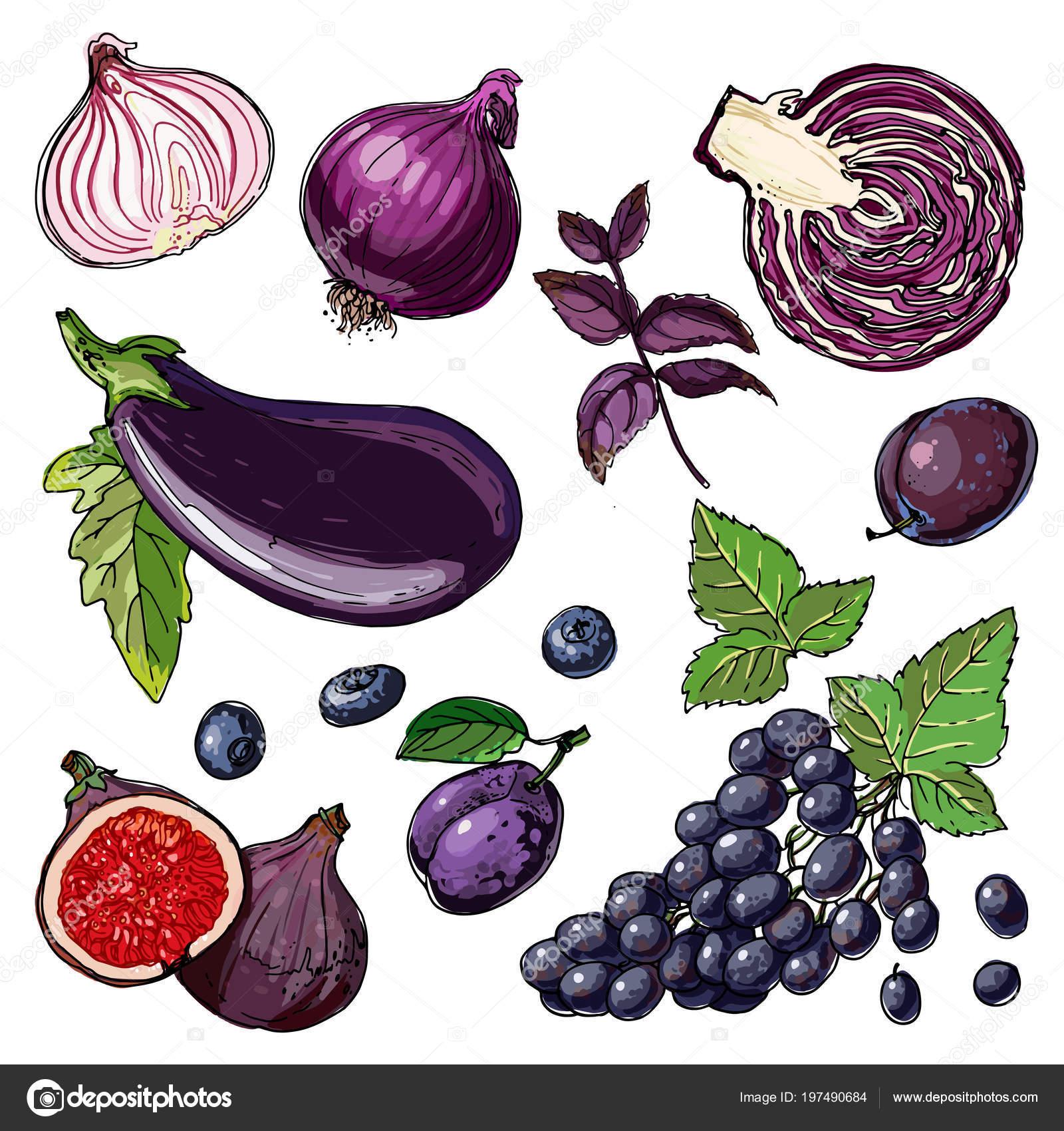 Mor Sebze Meyve Kümesi Gıda Beyaz Zemin üzerinde Bir Vektör Stok