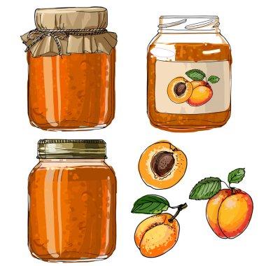 Apricot jam. Set jars for jam. Black line on a white background. Vector skech food
