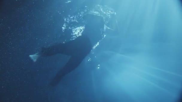 Csodálatos a vízben mozgó ember öltözött, kipróbálás-hoz kap a készletből, és esik le újra, sötét időn kívül néhány fény esik a víz.