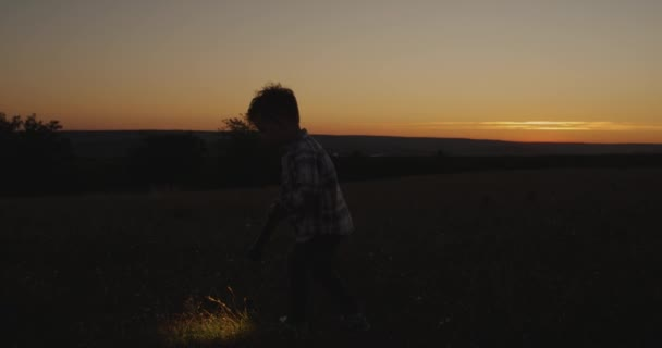 Amazing sunset view a cute boy playing with a flashlight through the grass.