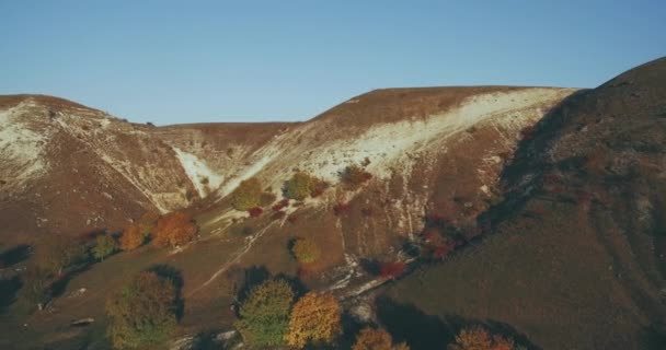 Just fabulous video with drone from the high of amazing mountain and field in the autumn.
