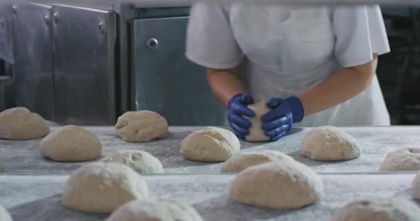 Profesní pracovníci v pekárenské branži berou těsto a připravují se k pečení chleba v troubě