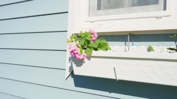 einen aufgehängten Blumenkorb mit Blumen unter dem Fenster. Haus im provenzalischen Stil
