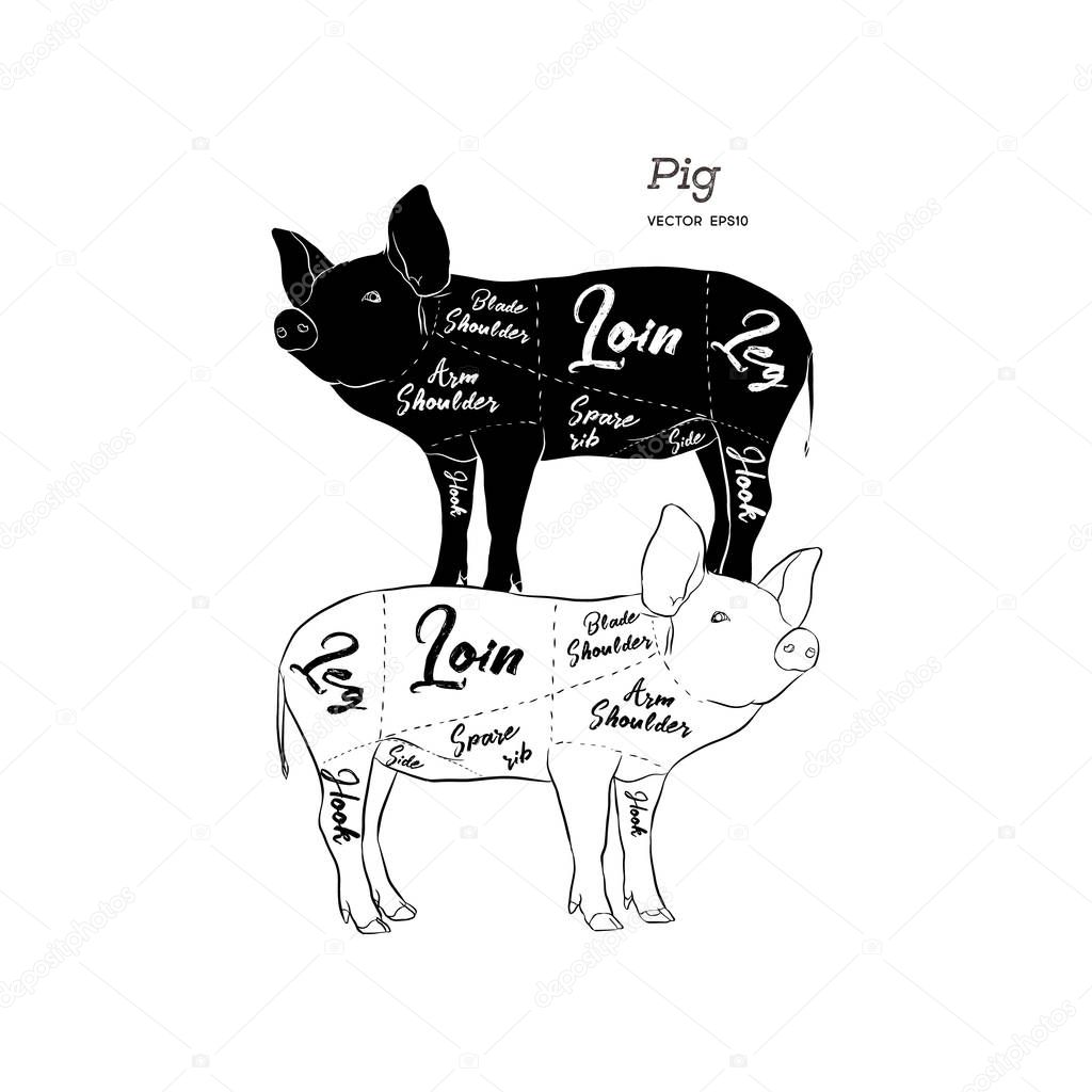 Icons Website Search Over 28444869 Icon Pig Butcher Diagram Cut Of Meat Set Poster Scheme And Guide Pork Vintage