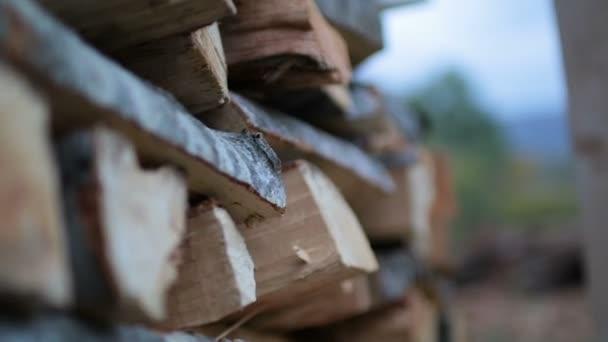 Stapel von Baumstämmen gehäckselt