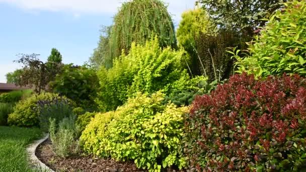 Krásná Letní Soukromá Zahrada Krajina S Barevnými Rostlinami A Oblé Kamenné Okraje. Design krajiny v anglickém stylu chalupy Zahrada.