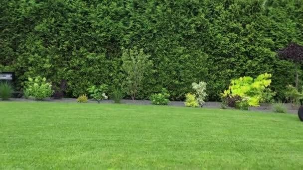 Údržba velkého soukromého dvorku trávníku a zahrady. Muž na traktoru sekání trávníku a udržování zdravé trávy .