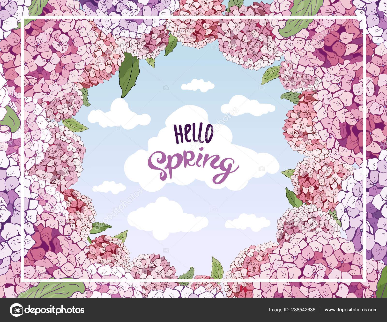 Vektor Hortensie Blume Blüte Für Den März Hochzeit Valentinstag