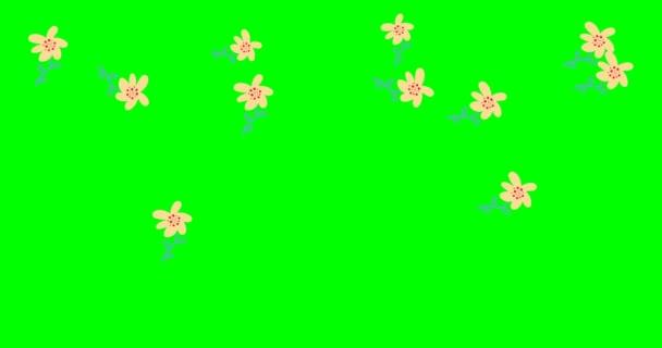 Eső effektusok. doodle virágok, botanikai háttér, zöld háttér dekoratív, absztrakt levelek minta animáció. videó. Fedősztori. készletfelvétel 4k