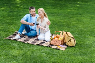 Happy young couple sitting on plaid and holding glasses of wine at picnic stock vector