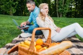 smiling young couple using smartphone and laptop at picnic in park