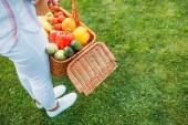 Fotografie oříznuté záběr ženy držící košík s čerstvou zeleninou pro piknik v rukou na zahradě