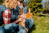 partial view of male farmer holding rabbit while his girlfriend listening rabbit by stethoscope outdoors