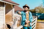 Fotografia allegro coltivatore maschio con la bottiglia di latte di capra di alimentazione di erba vicino al recinto di legno presso azienda agricola