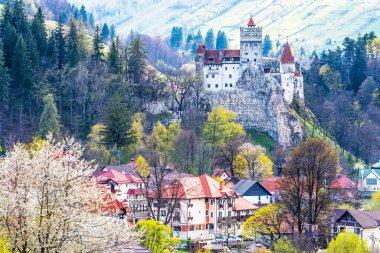 Landscape with Bran castle in spring season, Brasov landmark, Transylvania, Romania