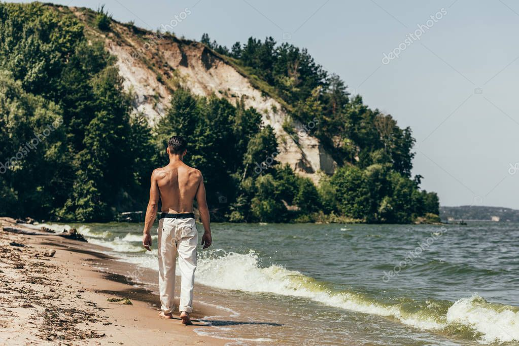rear view of shirtless man walking by sandy beach