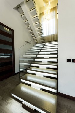 interior view of empty modern stairs with glass railings and door