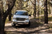 Fotografia camioncino bianco nella foresta durante il giorno