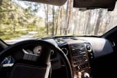 Fotografia vista della foresta piena di sole da interni auto con volante