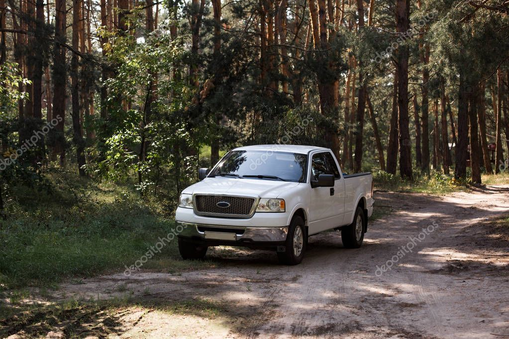 white car on trail in autumn forest with pine trees