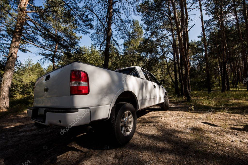 white pickup truck in autumn forest, surface level