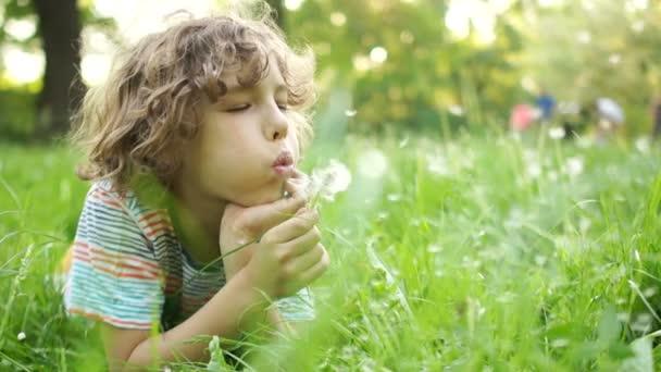 Vážnou dítě leží na letní louku s květinou v ruce. Kudrnaté vlasy chlapec fouká na pampeliška. Den dětí. Happy letní dovolená