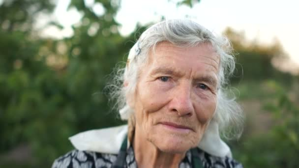 Expresivní portrét velmi staré ženy. Šedá vlasy vyřazen ženu v šátek vypadá soustředěně na rámu. Babička stála její zahradu