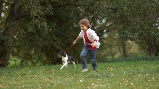 A boy with a dog for a walk in the park. The child runs and suddenly falls. Dynamic walk, safety rules