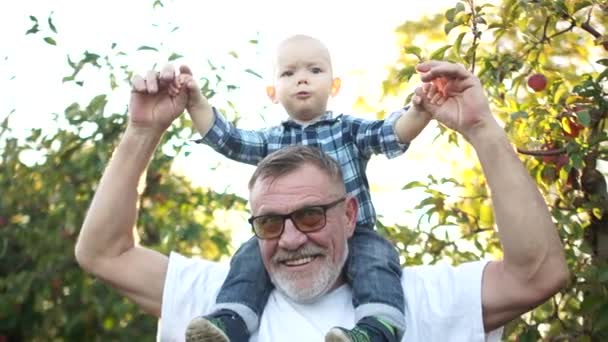 Happy grandfather with a beard and glasses holds on the shoulders of the little grandson. Todler laughs cheerfully. Fathers day, family for a walk, grandfather and grandson