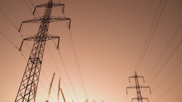 Power Poles on Dawn Sky Background