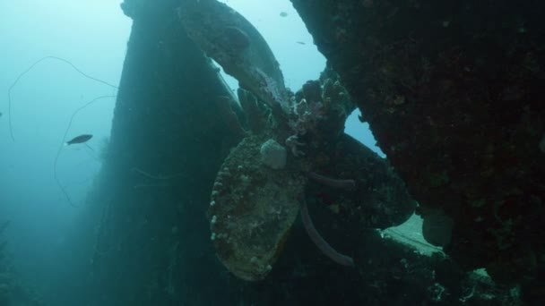Propeller of sunken shipwreck, caribbean sea, bonaire