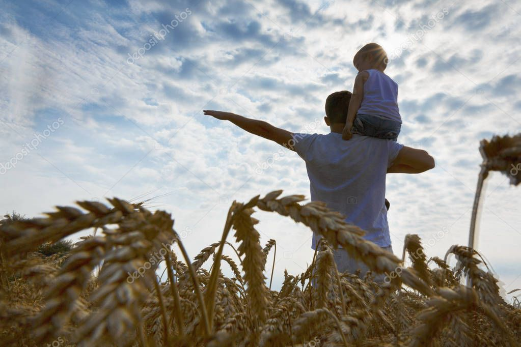 Happy family. Father and son on the wheat field. Man holding boy on shoulder. Looks at the sun. Back view.