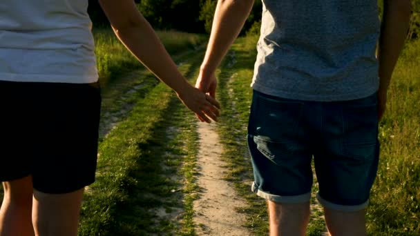 Couple walking, holding hands. Back view.