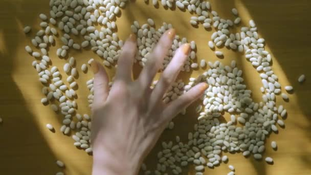 Woman hand playing with cannellini beans in natural light