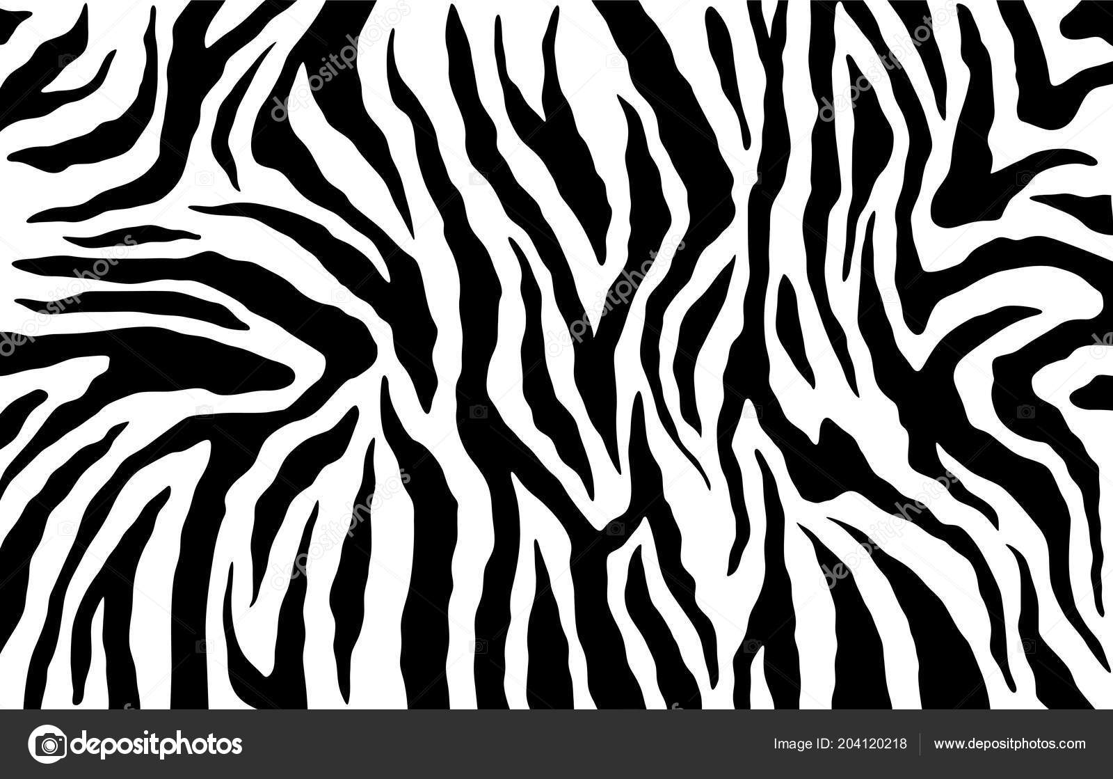 Image of: Desktop Wallpaper Zebra Huid Strepen Patroon Animal Print Zwart Wit Achtergrond Vector Stockvector Depositphotos Zebra Huid Strepen Patroon Animal Print Zwart Wit Achtergrond Vector