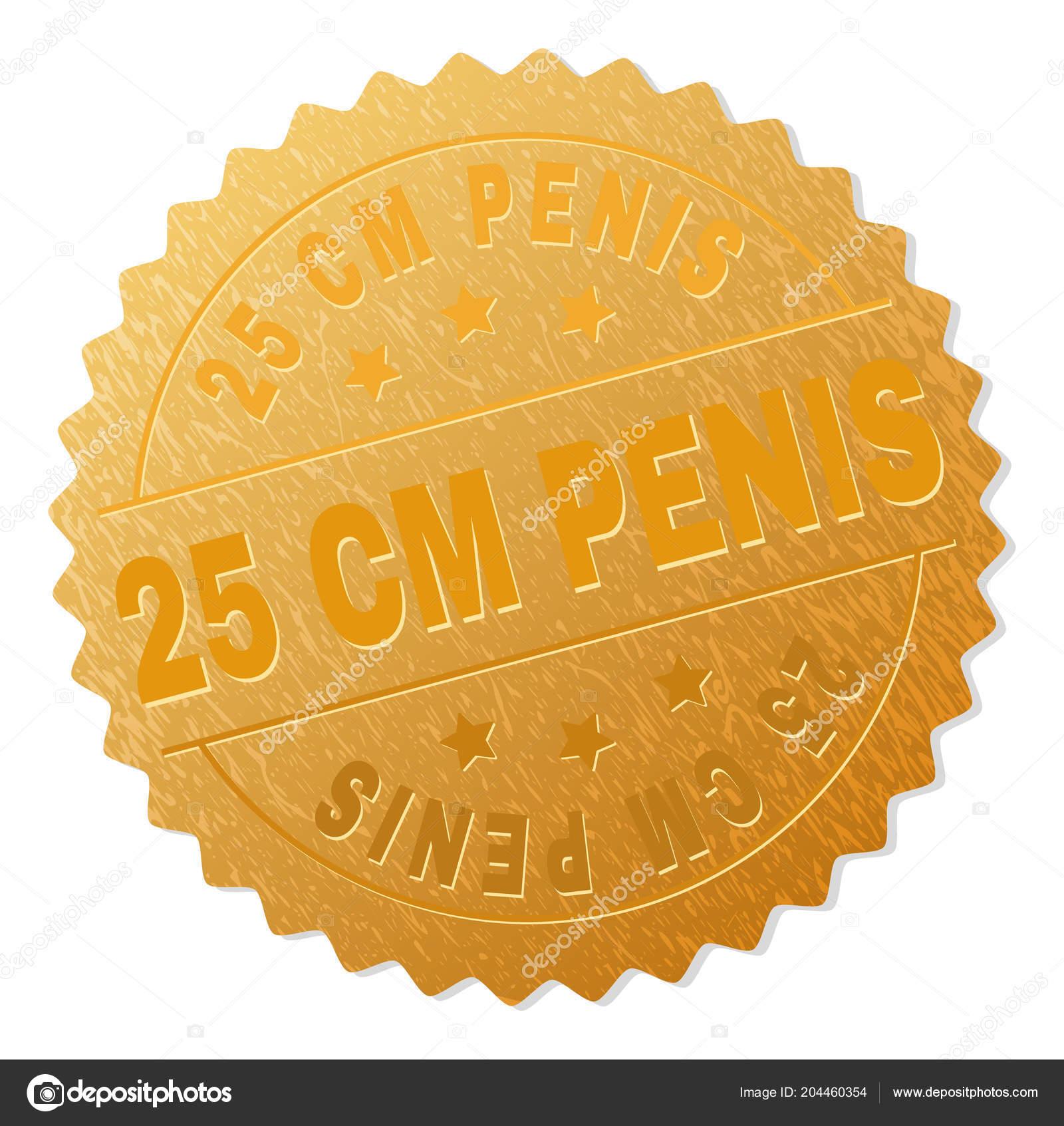 Velké dildo anální porno